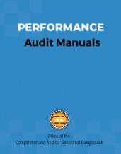 Performance Audit Manual